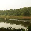 Amazoniens suche…