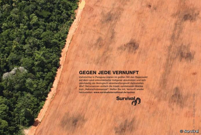 paraguay_defying_logic_german_crop_screen