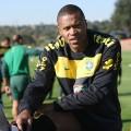 Brasilien mit Julio Baptista aber ohne Elano gegen Portugal