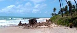 praia_de_coqueirinho_paraiba_baixaki