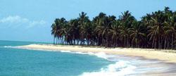 praia_do_gunga_baixaki