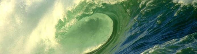waimea bay wave