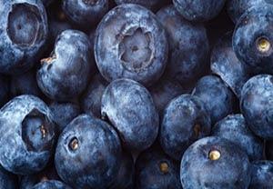 many blueberries
