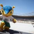 Maskottchen in Brasilien heisst Fuleco
