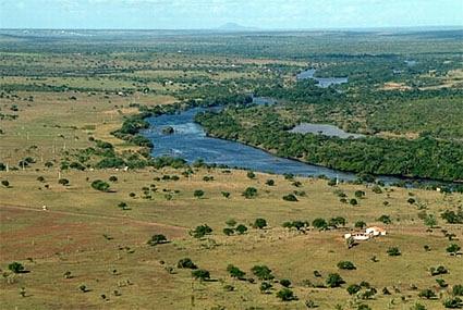 10Rio Paraguaçu-margi moss