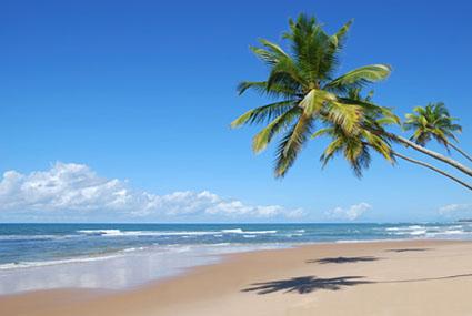3 cocotiers cassange