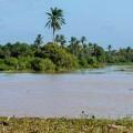 Strände von Caraíva