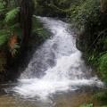 Wasserfall Distrikt Santo Amaro
