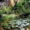 Höhle Distrikt Palmeiras