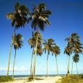 Bahia Strand