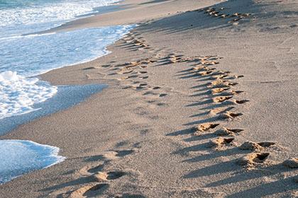 2-3strände-praia da daniela_4285