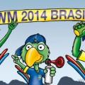 WM-Splitter vom Finale – 13. Juni 2014
