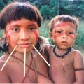 Für viele indigene Völker wie die Yanomani in Brasilien wird es immer schwieriger, ihren Lebensraum zu erhalten; Pixabay.com © Cmacauley (CC BY-SA 3.0)