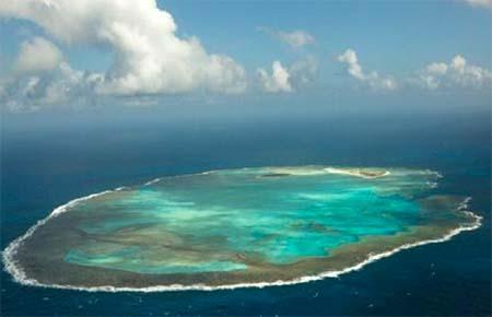 atol das rocas-tamar-org