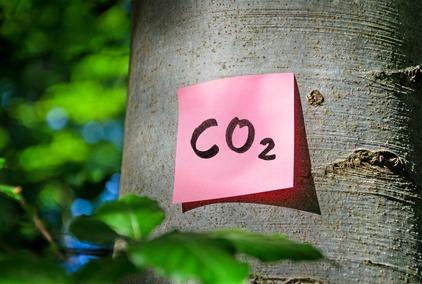 CO2-Bilanz Klimabilanz kologischer Fuabdruck