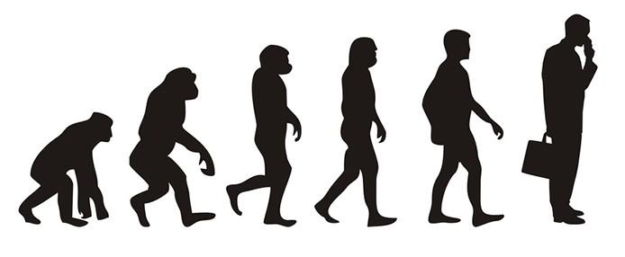 Stammt Der Mensch Vom Affen Ab