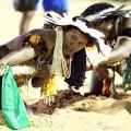Impressionen Wettkämpfe der Indigenen Weltspiele