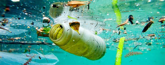 Mar Sem Lixo-Mar da Gente