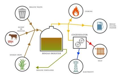 Biogas diagram