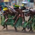 Indigene Völker des Cerrado sollen beim Umweltschutz unterstützt werden