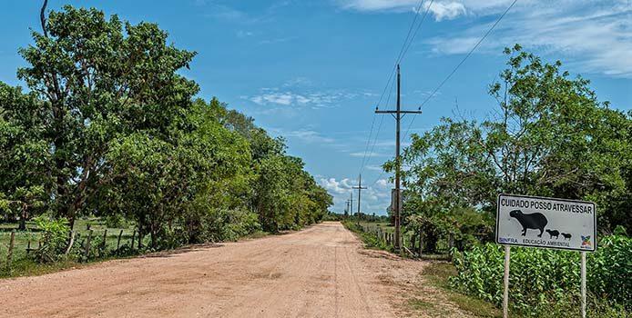 Im Pantanal weisen Schilder darauf hin, dass Tiere die Strasse überqueren - Foto: sabia brasilinfo