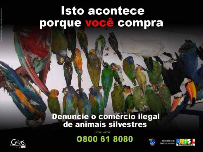 Gegen den illegalen Tierhandel
