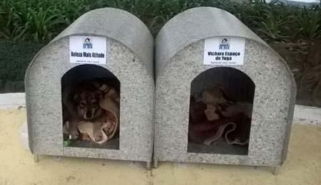 Hundehuetten-Idee Bruna Uncini_Foto Facebook