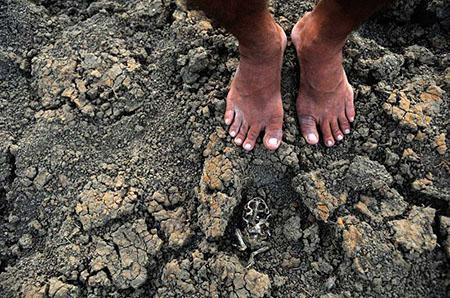 Verwüstung im Nordosten - Foto: Fernando Frazão/Agencia Brasil