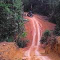 UN-Tag der Indigenen Völker: Unkontaktiertem Amazonas-Volk droht Vernichtung