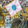 Karneval 2017 - Rosas de Ouro | Foto Robson Fernandjes - LIGASP - Fotos Publicas