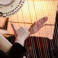 Harfenfestival unter dem Zuckerhut