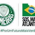 Fußballclub Palmeiras will Regenwald schützen
