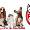 """Curitiba: Ansturm bei """"Parada Pet"""""""