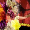 Carnaval Rio 2018-Imperio Serrano - Foto: Gabriel Monteiro | Riotur