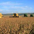 Großgrundbesitzer verdrängen Kleinlandwirte