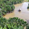 WWF-Studie zeigt: Brasilianer wollen mehr Natur