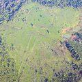 2.500 Jahre alte Erdzeichnungen Amazoniens unter Denkmalschutz gestellt