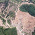 Ex-Umweltminister Brasiliens rufen Jugend zu Protesten auf