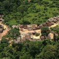 Brasiliens Regierung kritisiert Raumforschungsinstitut wegen zunehmender Kahlschläge im Amazonas-Regenwald
