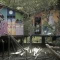 """""""Street River"""" sorgt mit Graffiti für mehr Lebensqualität der Flussanwohner Amazoniens"""