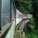 Trem de Curitiba a Paranaguá - Paraná - Brasil